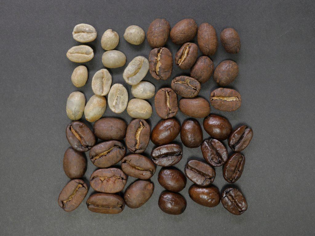 Sélection de grain de café