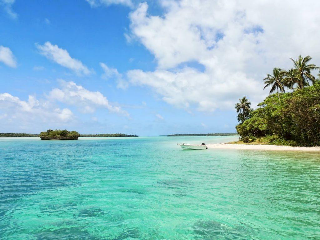 Plage tropicale avec des palmiers et une eau turquoise