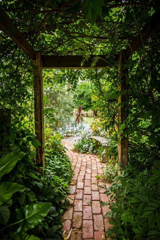 allée de jardin en pavés